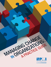 Managing Change in Organizations: A Practice Guide; Paperback