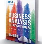 Business Analysis for Practitioners: A Practice Guide; Paperback